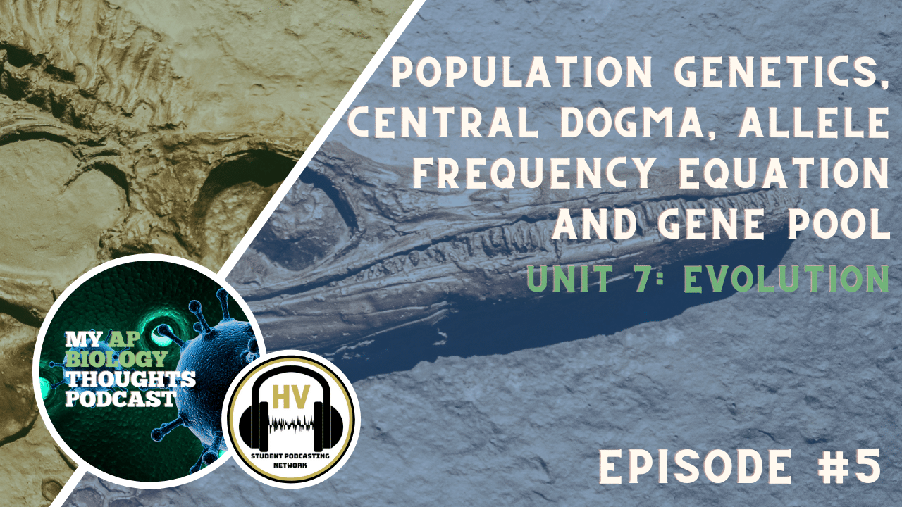 Unit 7 Evolution Episode 5 Population Genetics