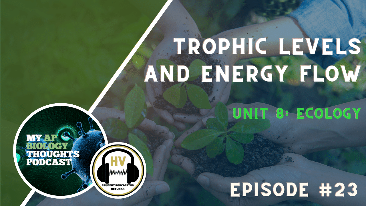 Trophic Levels and Energy Flow