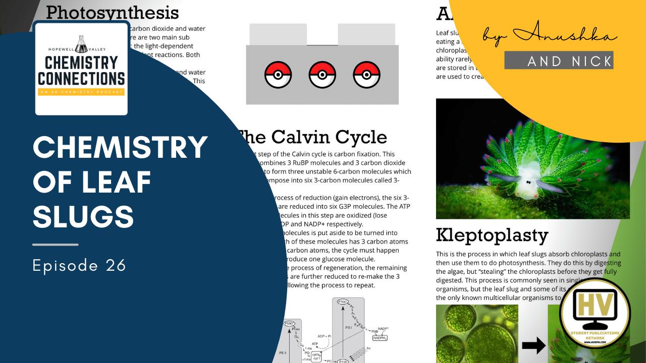 Chemistry of Leaf Slugs