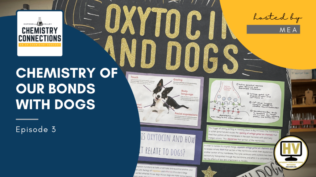 Chemistry of Our Bonds with Dogs